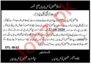 Legal Advisor Jobs 2020 in Tehsil Council Chunian