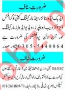 Web Developer & Hostel Warden Jobs 2020 in Peshawar
