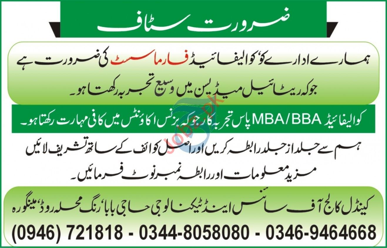 Candle College of Science & Technology Mingora Jobs 2020