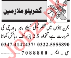 Domestic Staff Jobs Career Opportunity in Lahore