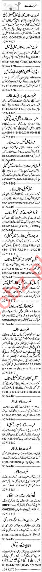 Accounts Officer & Executive Manager Jobs 2020 in Lahore