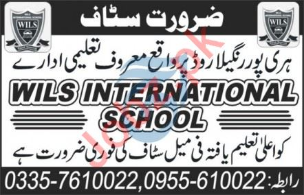 Wils International School Haripur Jobs 2020 for Teacher
