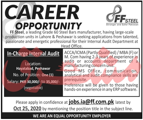 FF Steel Job 2020 For In Charge Internal Audit
