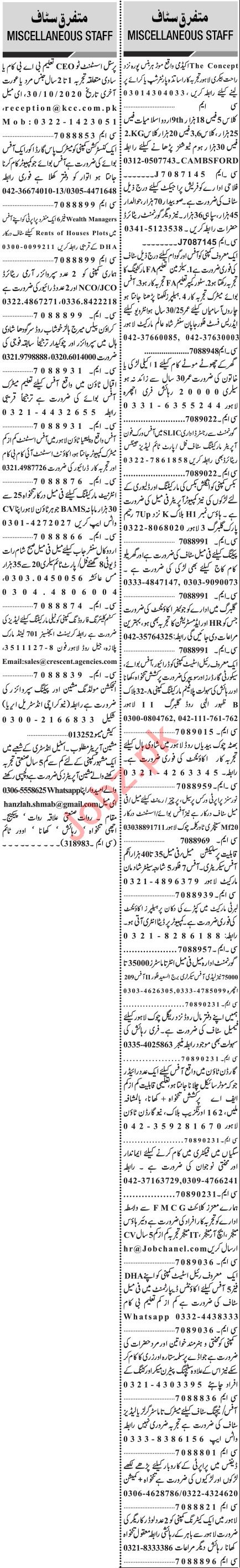 Jang Sunday Classified Ads 18 Oct 2020 for Management Staff