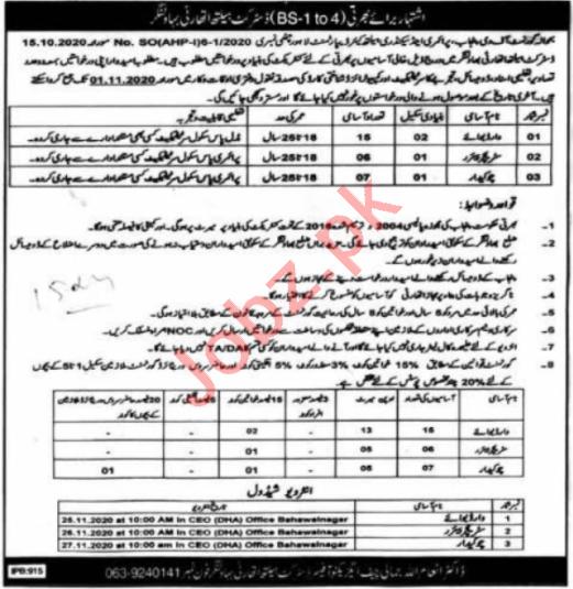 Health Department Bahawalnagar Jobs 2020 for Ward Servant
