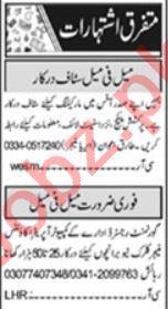 Public Dealing Expert & Office Assistant Jobs 2020