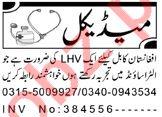 Medical & Paramedical Staff Jobs 2020 in Peshawar