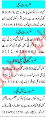 Teaching Staff Jobs Open in Peshawar 2020