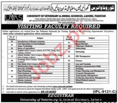 UVAS University Lahore Jobs 2020 for Visiting Professors
