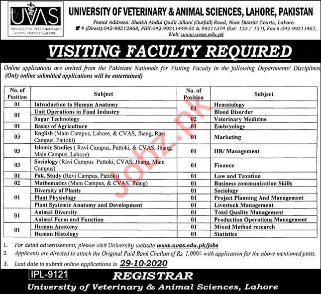 University of Veterinary & Animal Sciences UVAS Jobs 2020