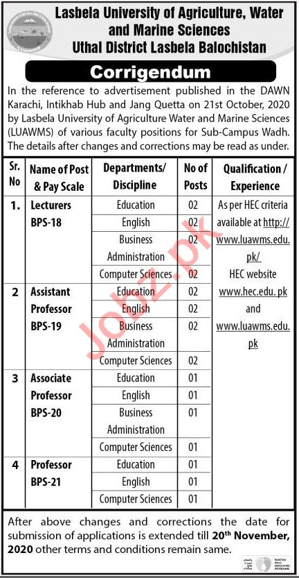 LUAWMS University Jobs 2020 for Professor & Lecturer