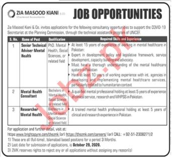 Technical Adviser Jobs in Zia Masood Kiani & Co Islamabad