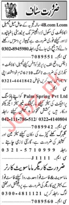 Female Accountant & Marketing Manager Jobs 2020