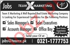 Team X Group of Companies Lahore Jobs 2020 Sales Executive