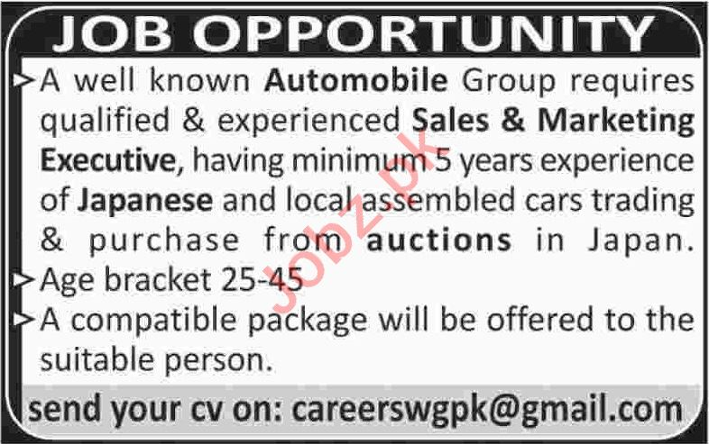 Sales & Marketing Executive Jobs 2020 in Karachi