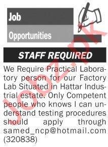 The News Sunday Classified Ads 1st Nov 2020 Factory Staff