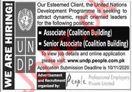 UNDP Islamabad Jobs 2020 for Senior Associate