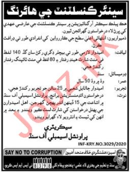 Senior Consultant Jobs 2020 in Provincial Assembly of Sindh