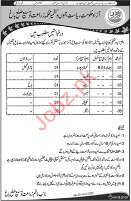 Agriculture Extension Department Bagh Jobs 2020 for Baildar