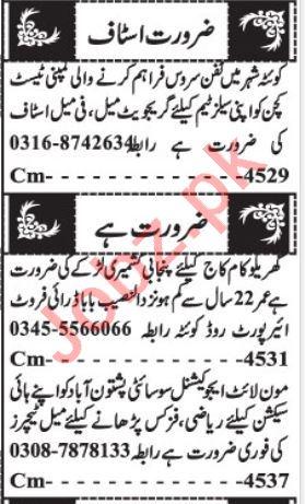 Sales Staff & Teaching Staff Jobs 2020 in Quetta