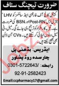Capital College Of Pharmacy CCPHS Peshawar Jobs 2020