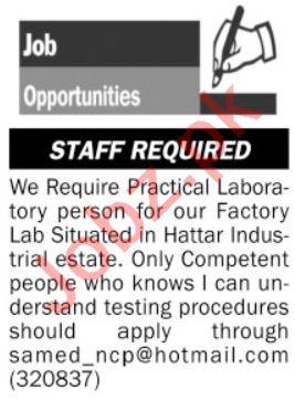 Lab Technologist & Lab Technician Jobs 2020