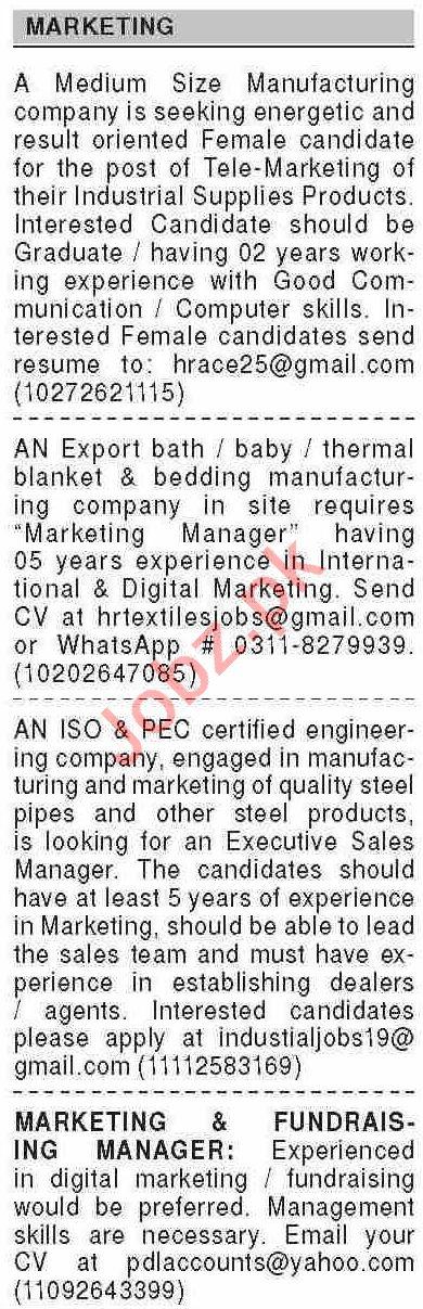 Dawn Sunday Classified Ads 8th Nov 2020 for Marketing Staff
