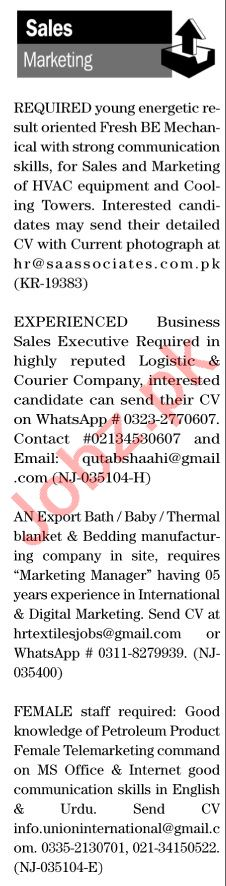 The News Sunday Classified Ads 8th Nov 2020 for Sales Staff