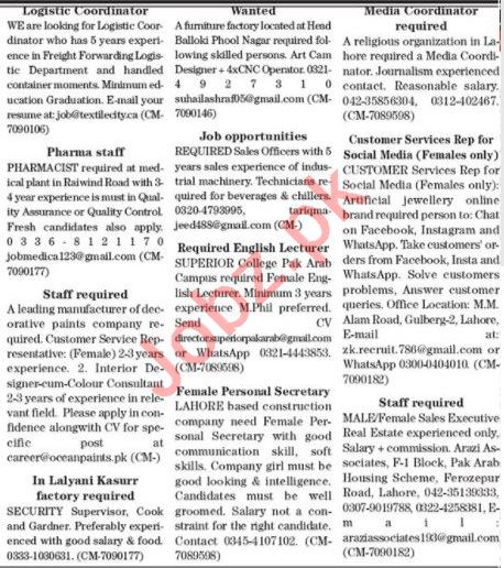 The News Sunday Classified Ads 8th Nov 2020 for Management