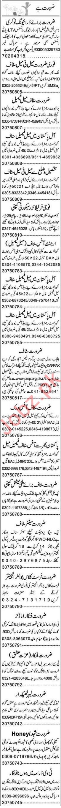 Insurance Agent & Admin Officer Jobs 2020 in Multan