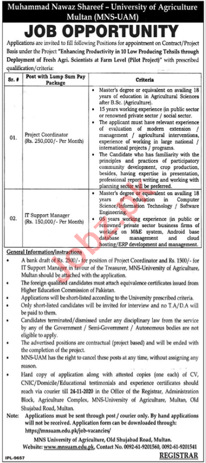 MNS University Of Agriculture Multan Jobs 2020 for Manager
