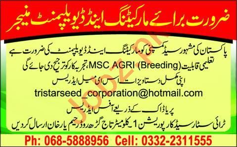 Marketing & Development Manager Jobs 2020 in Tri Star Seed