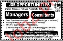 Manager & Consultant Jobs 2020 in Efu Life Assurance