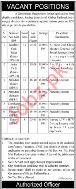 P O Box No 702 Post Mall Peshawar University Jobs 2020