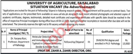 University of Agriculture Faisalabad Fellowship Program 2020
