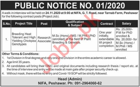 Nuclear Institute for Food & Agriculture NIFA Peshawar Jobs