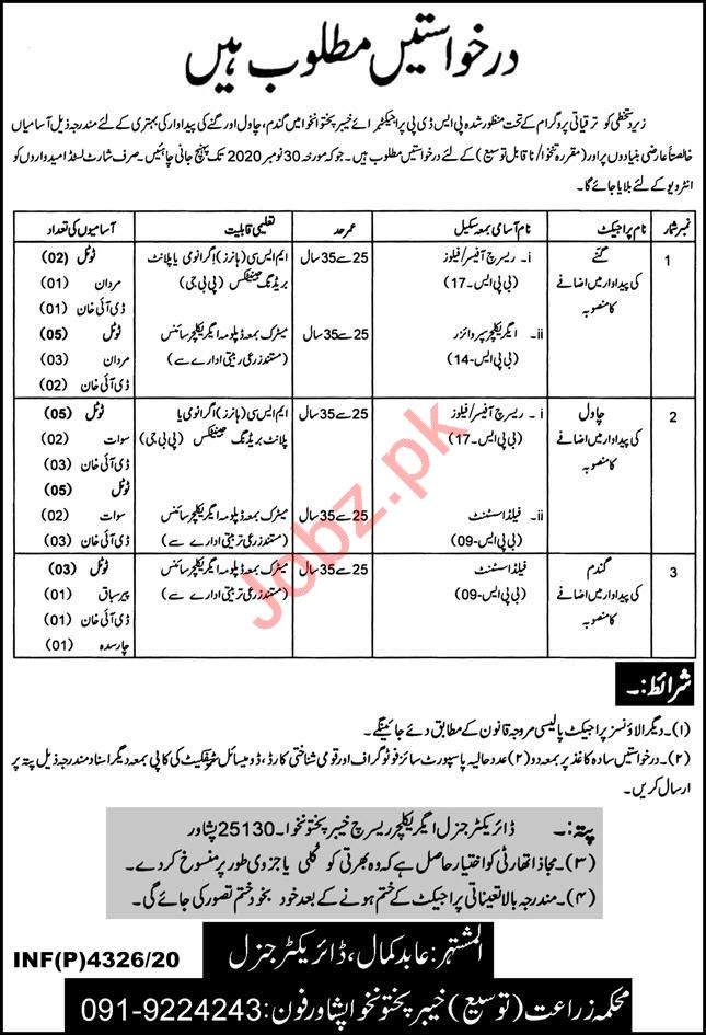 Agriculture Department Peshawar Jobs 2020 Field Assistant