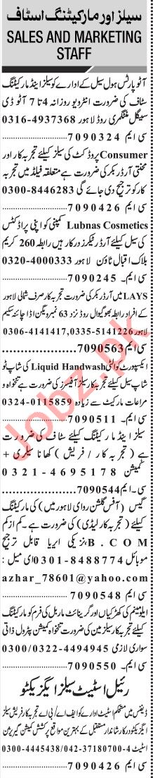 Jang Sunday Classified Ads 15 Nov 2020 for Sales & Marketing