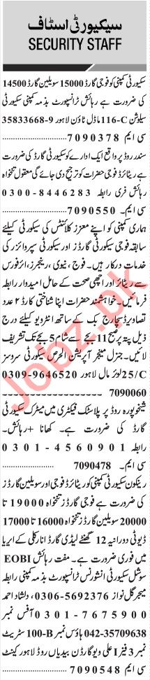 Jang Sunday Classified Ads 15 Nov 2020 for Security Staff