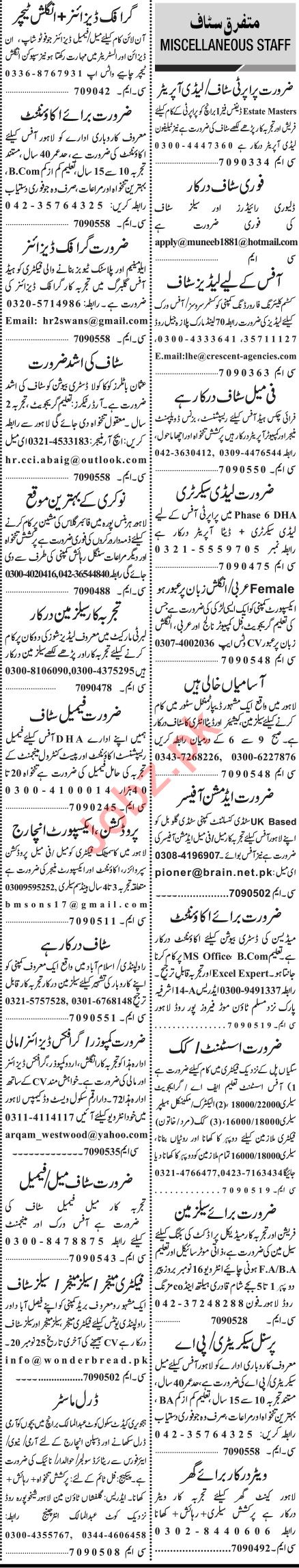 Jang Sunday Classified Ads 15 Nov 2020 for General Staff