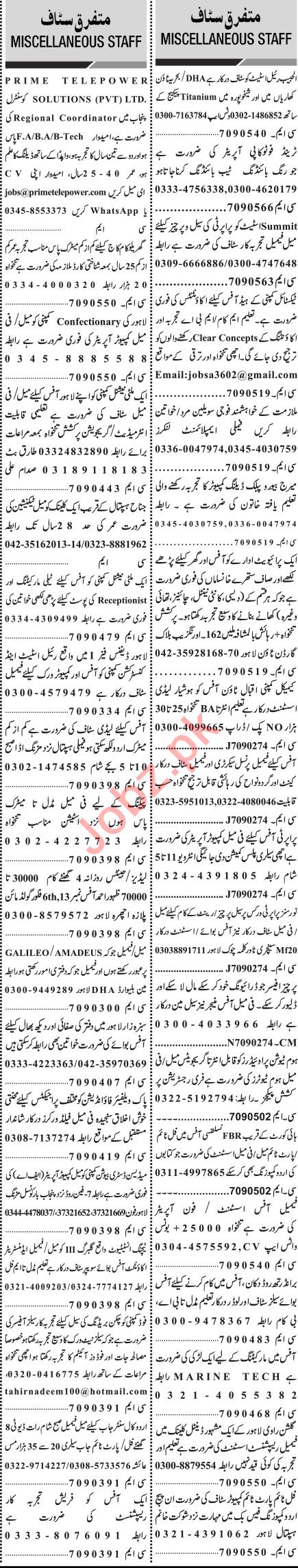 Jang Sunday Classified Ads 15 Nov 2020 for Management Staff