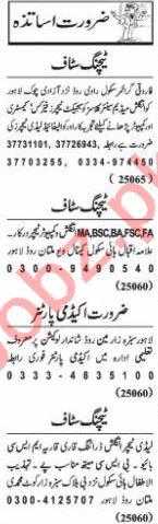 Nawaiwaqt Sunday Classified Ads 15 Nov 2020 for Educational