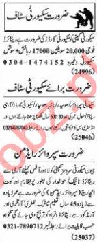 Nawaiwaqt Sunday Classified Ads 15 Nov 2020 for Security