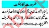Mashriq Sunday Classified Ads 15 Nov 2020 for Accounts Staff