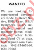 Nation Sunday Classified Ads 15 Nov 2020 for IT Staff