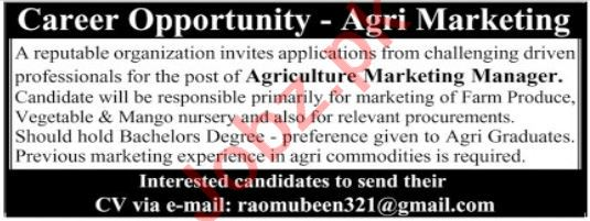 Agriculture Marketing Manager Jobs 2020 in Multan