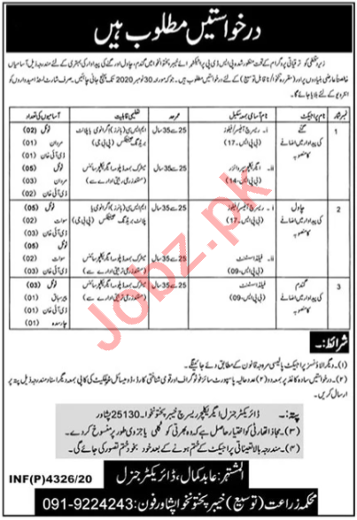 Agriculture Department Peshawar Jobs for Research Officer