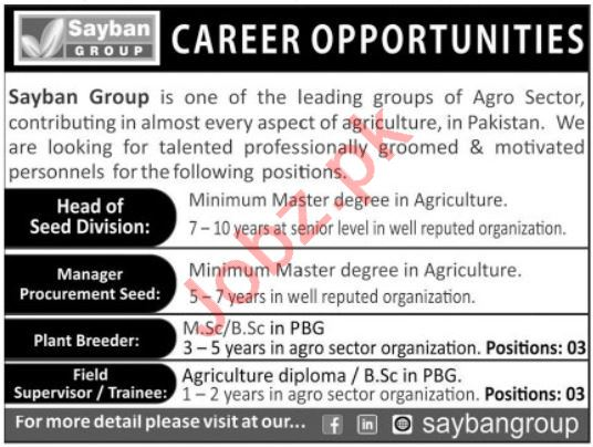 Sayban Group Jobs 2020 for Head of Seed Division & Manager