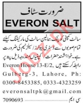 Everon Salt Lahore Jobs 2020 for Marketing Staff