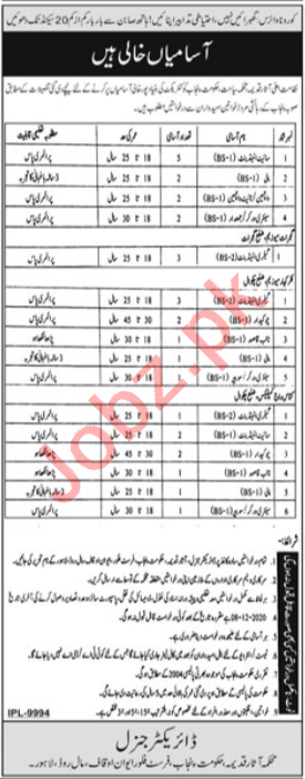 Archaeology & Tourism Department Jobs 2020 for Attendant